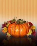 Potiron avec des fleurs d'automne Image libre de droits