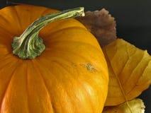 Potiron avec des lames d'automne Photos libres de droits