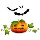 Potiron bats-01 de Halloween Illustration Libre de Droits