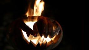 Potiron brûlant Halloween bouclé banque de vidéos