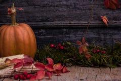 Potiron, courge Fond heureux de jour d'action de grâces Autumn Thanksgiving Pumpkins au-dessus de fond en bois, l'encore-vie Beau Photos stock
