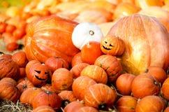 Potiron découpé utilisé comme symbole de Halloween image libre de droits