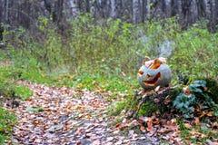 Potiron de Halloween avec de la fumée dans la forêt Photographie stock libre de droits