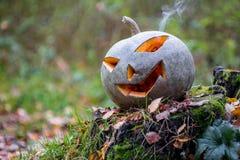 Potiron de Halloween avec de la fumée dans la forêt image libre de droits