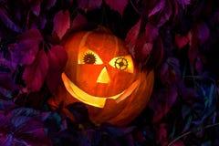 Potiron de Halloween avec des yeux faits de vitesses d'horloge, parmi les feuilles des raisins sauvages Image libre de droits