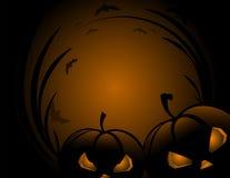 Potiron de Halloween avec le fond de vacances de feuilles Photos libres de droits