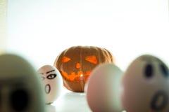 Potiron de Halloween contre les oeufs fâchés photographie stock libre de droits