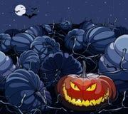 Potiron de Halloween de bande dessinée rougeoyant dans la boîte de nuit avec des potirons Photo stock