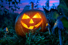 Potiron de Halloween la nuit dans le jardin photos libres de droits