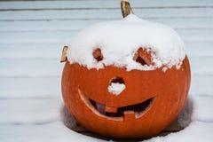 Potiron de Milou Halloween Photo stock
