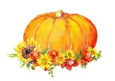 Potiron de thanksgiving avec des fleurs, fruits watercolor Photos libres de droits