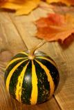 Potiron de thanksgiving sur le conseil en bois Image libre de droits