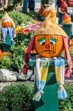 Potiron de Whiny pour Halloween Image stock