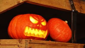 Potiron effrayant de Halloween à l'intérieur d'un coffre Image stock