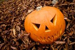 Potiron effrayant de Jack-o-lanterne de Halloween Photographie stock
