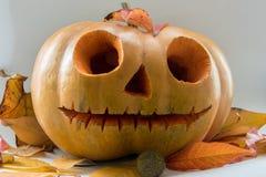 Potiron effrayant de visage de Halloween sur le fond blanc Image stock