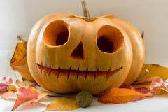 Potiron effrayant de visage de Halloween sur le fond blanc Photos libres de droits
