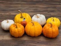 Potiron en céramique de décoration miniature orange avec le fantôme blanc et les grands et petits potirons blancs, jaunes, et ora images stock