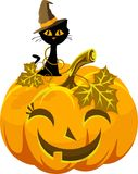 Potiron et chat drôles d'affiche dans le chapeau Veille de la toussaint Photographie stock libre de droits