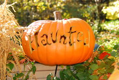 Potiron hanté de Halloween Photos libres de droits