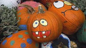 Potiron heureux de Halloween dans les jardins par la baie Image libre de droits