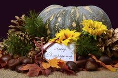 Potiron heureux de thanksgiving dans l'arrangement rustique image libre de droits