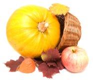 Potiron, lames d'automne et pomme   Photos stock