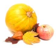 Potiron, lames d'automne et pomme   Photographie stock libre de droits
