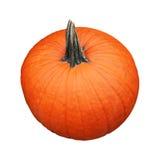 potiron orange photo stock