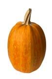 potiron orange Images stock
