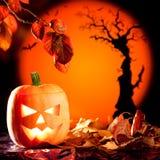 Potiron orange de Veille de la toussaint sur des lames d'automne Photographie stock