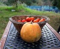 Potiron orange devant un panier complètement des tomates rouges fraîches Tableau de jardin image libre de droits