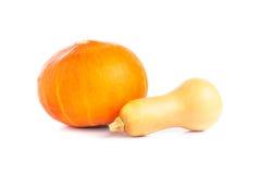 Potiron orange frais sur le fond blanc Image stock