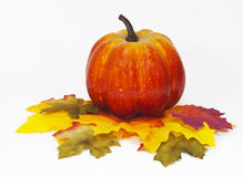 Potiron sur des feuilles d'automne Photographie stock