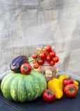Potiron, tomates, poivre et cruche verts Image libre de droits