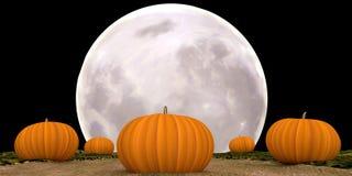Potirons éclairés par la lune de Halloween Photo libre de droits