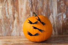 Potirons avec des battes ou des décorations de partie de Halloween Images stock