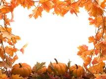 Potirons avec des lames d'automne