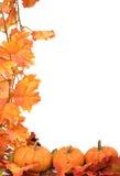 Potirons avec des lames d'automne Photographie stock