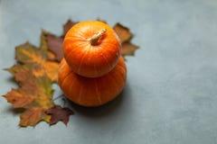 Potirons Couleurs 9 d'automne Composition d'automne moisson photographie stock libre de droits