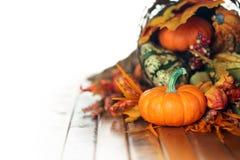 Potirons, courges, et feuilles dans une corne d'abondance d'automne Photographie stock
