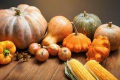 Potirons d'automne et d'autres fruits et légumes sur des mercis en bois Images stock