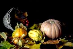 Potirons d'automne et feuilles sèches Photographie stock libre de droits
