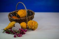 Potirons dans le panier, comme décoration d'automne Photographie stock