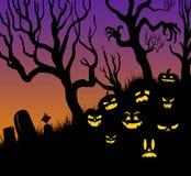 Potirons de BANNIÈRE de logo de Halloween aucun TYPE Photo stock