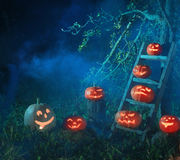 Potirons de cric-o-lanterne de Halloween Photographie stock libre de droits