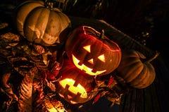 Potirons de Halloween avec la réflexion Photographie stock
