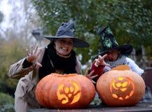 Potirons de Halloween et deux sorcières Photos stock