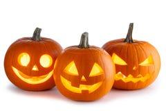 Potirons de Halloween sur le blanc Photographie stock