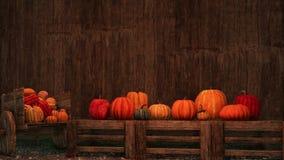 Potirons de thanksgiving sur le fond en bois rustique illustration libre de droits